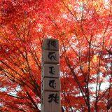 位牌に梵字は必要?【梵字の意味や宗派ごとの梵字を解説】
